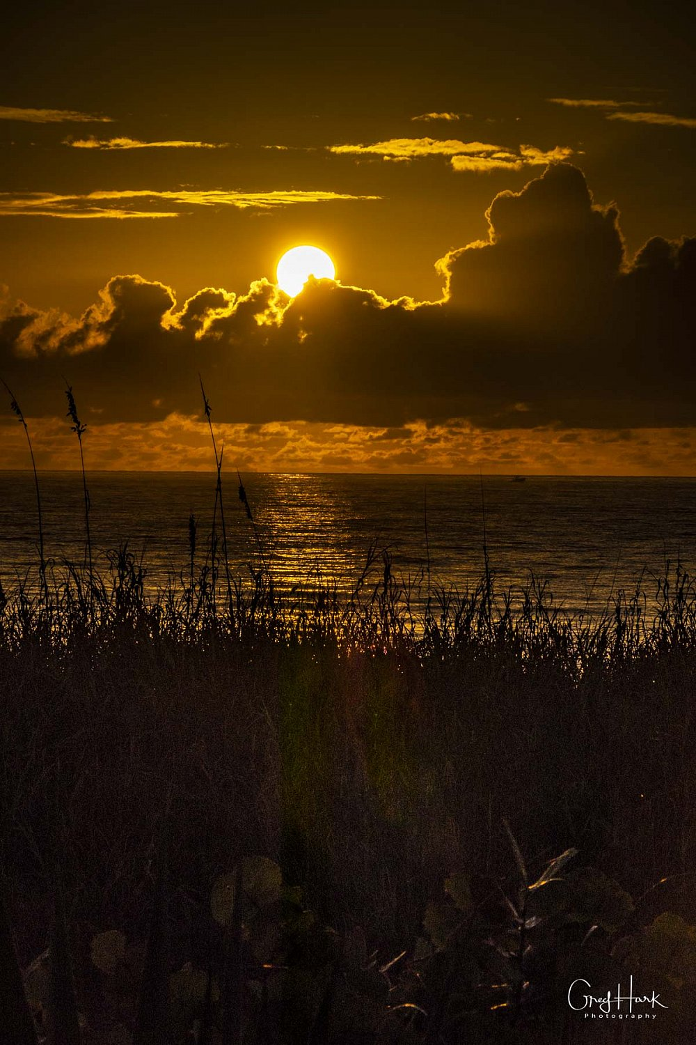 Sunrises Delray Beach Copperleaf,Las Verdes,Sunrise,